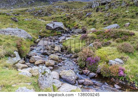 A stream in Snowdonia national park Wales