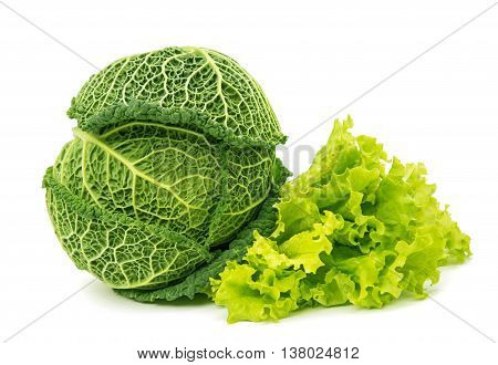 green, Savoy cabbage isolated on white background