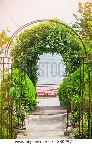 arch plants way to the sea nature background