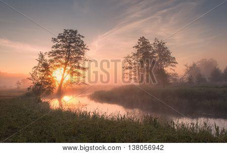 Summer foggy sunny morning, misty morning on the lake