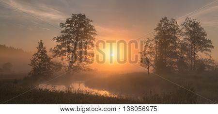 Bright summer sunrise, misty morning on the lake