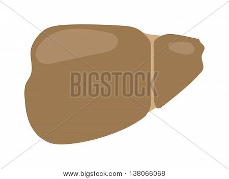 Realistic human liver vector medical illustration. Medicine anatomy human liver, organ human, health and biology. Liver patients with hepatitis repercussion alcoholism human liver.