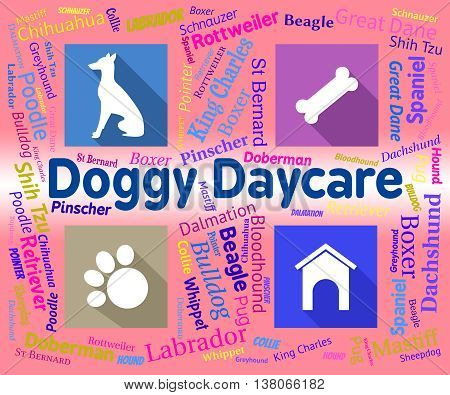 Doggy Daycare Shows Pet Pups And Canines