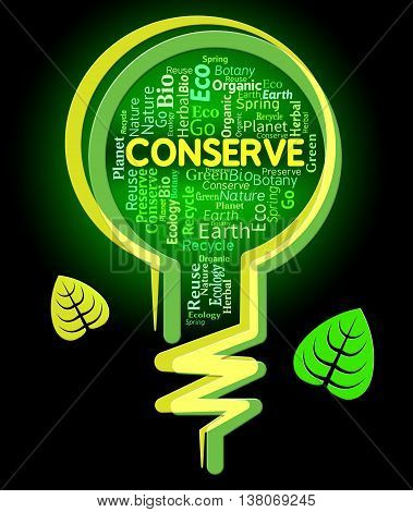 Conserve Lightbulb Shows Sustainable Conserving And Protecting