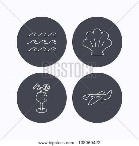 Shell, waves and cocktail icons. Airplane linear sign. Flat icons in circle buttons on white background. Vector