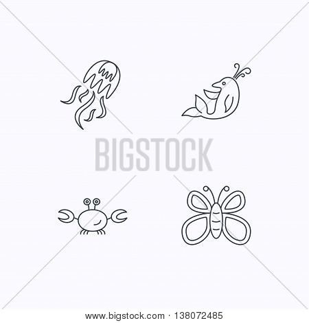 Jellyfish, crab and dolphin icons. Butterfly linear sign. Flat linear icons on white background. Vector