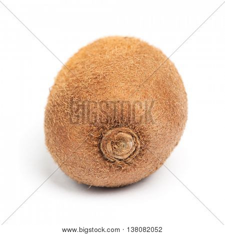 Single kiwi isolated on white background
