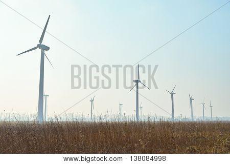 Wind turbine farm at morning time toned image