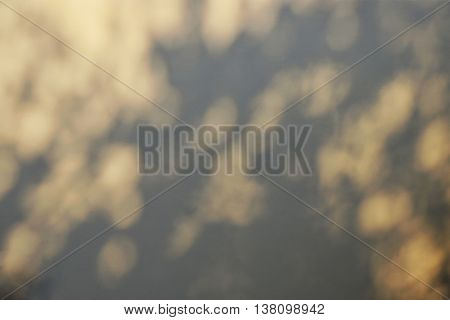 abstract of tree shadow with bokeh effect on brown concrete wall background