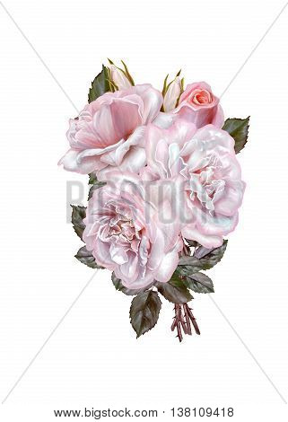 Bouquet of flowers. Rosa pastel pink old style. Flower composition. Isolated on white background.