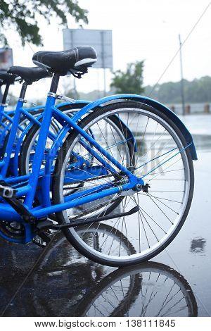Urban scene. Wet bicycles on parking under rain