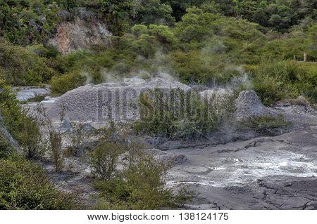 Mud pool of Whakarewarewa Geyser at Te Pui thermal park in geothermal valley of Rotorua New Zealand poster