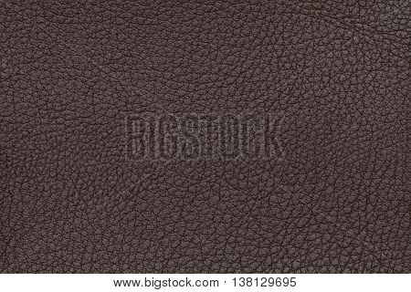 Brown leather texture background. Closeup photo. Reptile skin. The skin of a crocodile or a snake