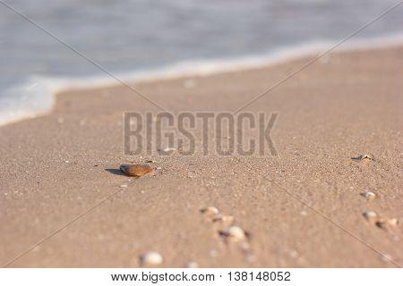 Seastone on a sandy beach in the background waves. Sea foam poster
