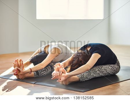 Two Young Women Doing Yoga Asana Seated Forward Bend