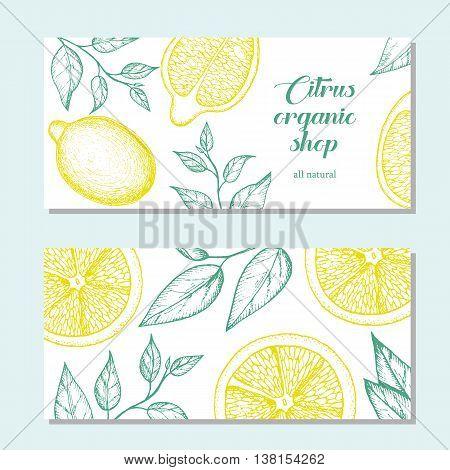 Citrus horizontal banner collection. Lemons hand drawn in ink illustration. Vector vintage illustration. Line art graphic. Lemons flyer set.