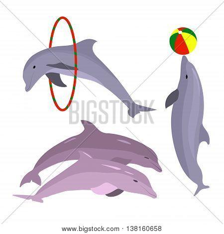 Playful dolphins. Dolphin set hand drawn. OceanAnimal