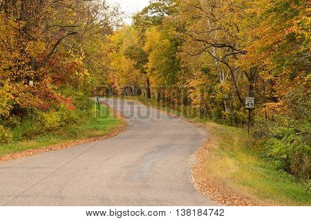 Autumn Colors Along a Rural Road in the Midwest