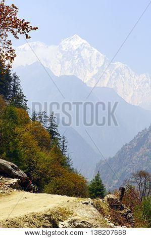 Views of the mountain peaks of the Himalayas