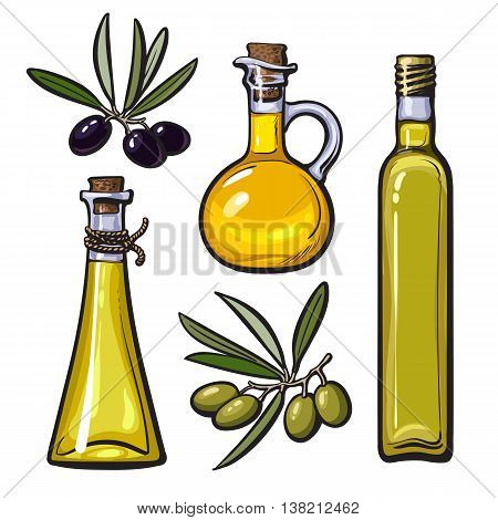 Set of olive oil bottles with black and green olives isolated sketch style vector illustration on white background. Set of beautiful realistic traditional oil bottles