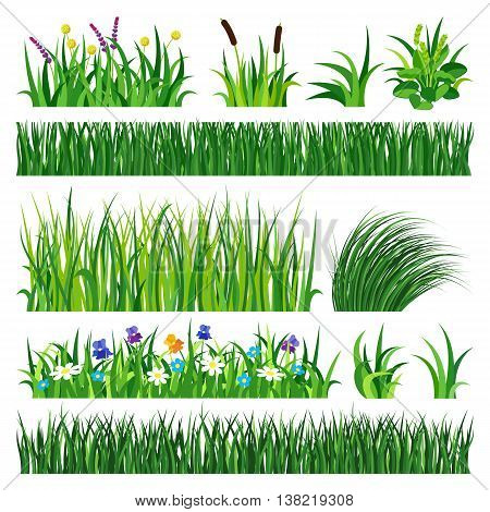 Green grass showing roots. Green grass with earth crosscut. Grass earth green, nature, background