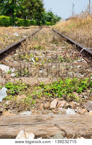 Vacant Rail Way Switch Track With Yellow Die Grass.