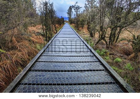 wood path walking board in metheson lake new zealand
