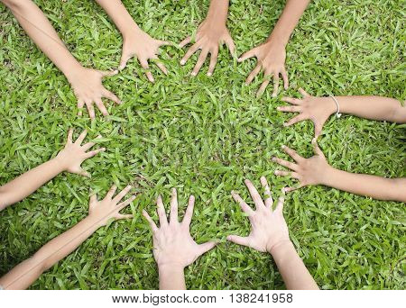 Children hands on green grass background, spring time.