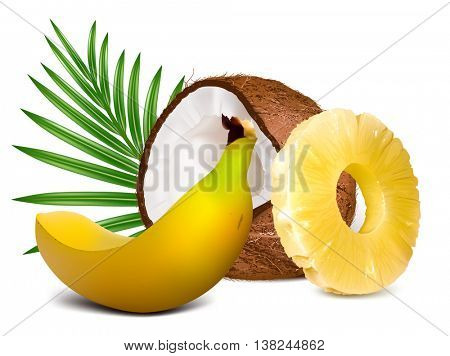Tropical fruits, pineapple, coconut, banana. Fully editable handmade mesh vector illustration