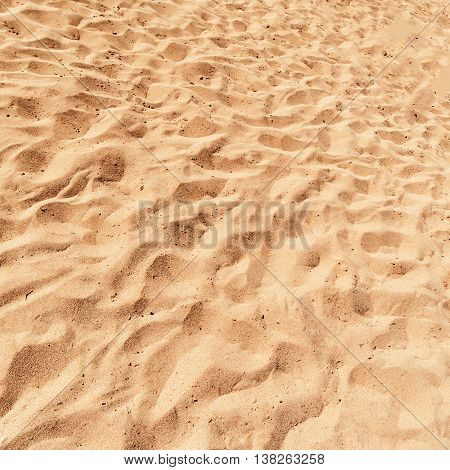 Beach Sand Background close up square image. Sandy Texture pattern