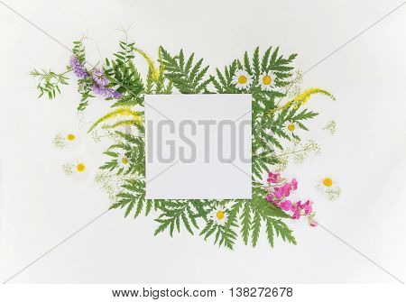 Scrapbooking page of wedding or family photo album frame with fresh branches green leaves herbs chamomile vetch and other multicolored wildflowers on white background; top view flat lay overhead view