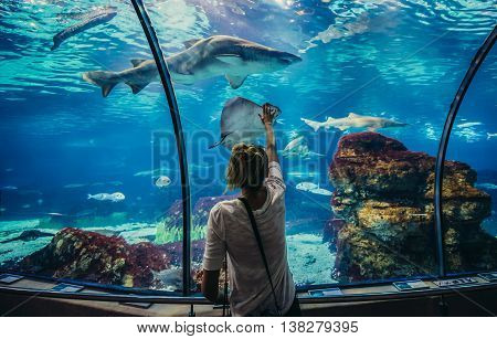 Barcelona Spain - May 26 2015. Woman looks at shark in Barcelona Aquarium