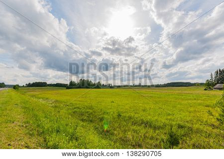 Green field. Summer landscape. Beautiful clouds. Nature background.