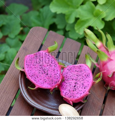 Dragon Fruit, Tropical Fruits, Vietnam Agriculture