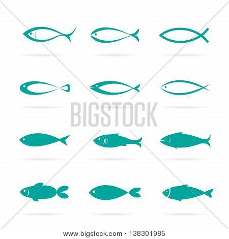 Set of vector fish icons on white background Vector fish icons for your design.