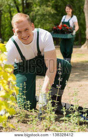 Couple Of Gardeners In The Garden