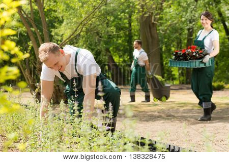 Team Of Gardeners  Planting Flowers