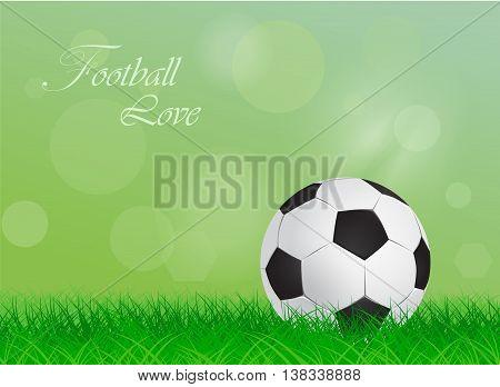 soccer ball on a green lawn - vector illustration
