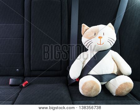 Plush toy cat strapped in with seat belt in back seat of car. Safety on the road. Protection concept.