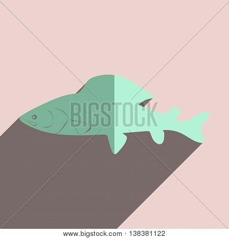 Flat icons with shadow of grayling. Vector illustration