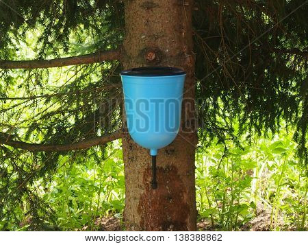 The washstand is suspended to a coniferous tree on the ranch and serves for washing of hands and the person