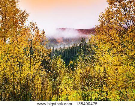 Horizontal vivid Norway autumn landscape background backdrop