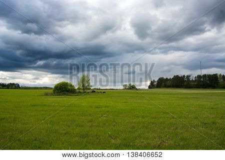 Green field. Summer landscape with massive clouds. Stormy weather.