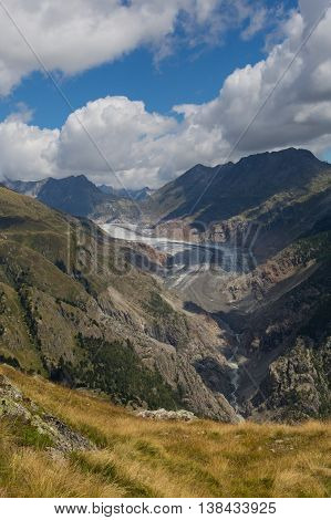 Glacier Aletsch with mountains meadow clouds and blue sky