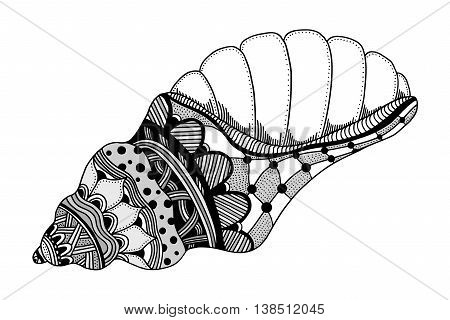 Zentangle stylized black sea shell. Hand Drawn aquatic doodle vector illustration. Sketch for tattoo or makhenda. Seashell collection. Ocean life.