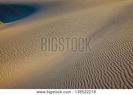 Windy and hot morning in the desert. Small ripples on the sand dunes. Picturesque part of Death Valley, USA. Mesquite Flat Sand Dunes