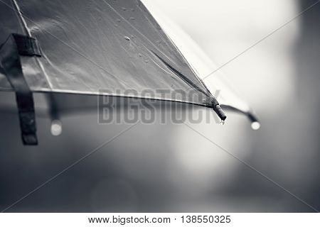 Rainy day. Close up view of the drop on the umbrella during rain.
