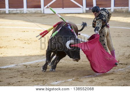 Ubeda Spain - September 29 2010: The Spanish Bullfighter Morante de la Puebla bullfighting with the crutch in the Bullring of Ubeda Spain