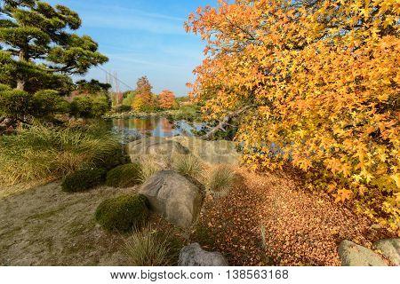 Lake with autum foliage and blue sky