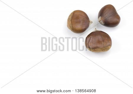 Three chestnuts isolated on a white background